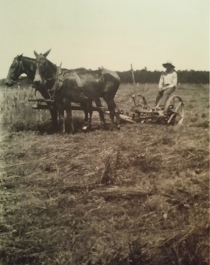 father in field