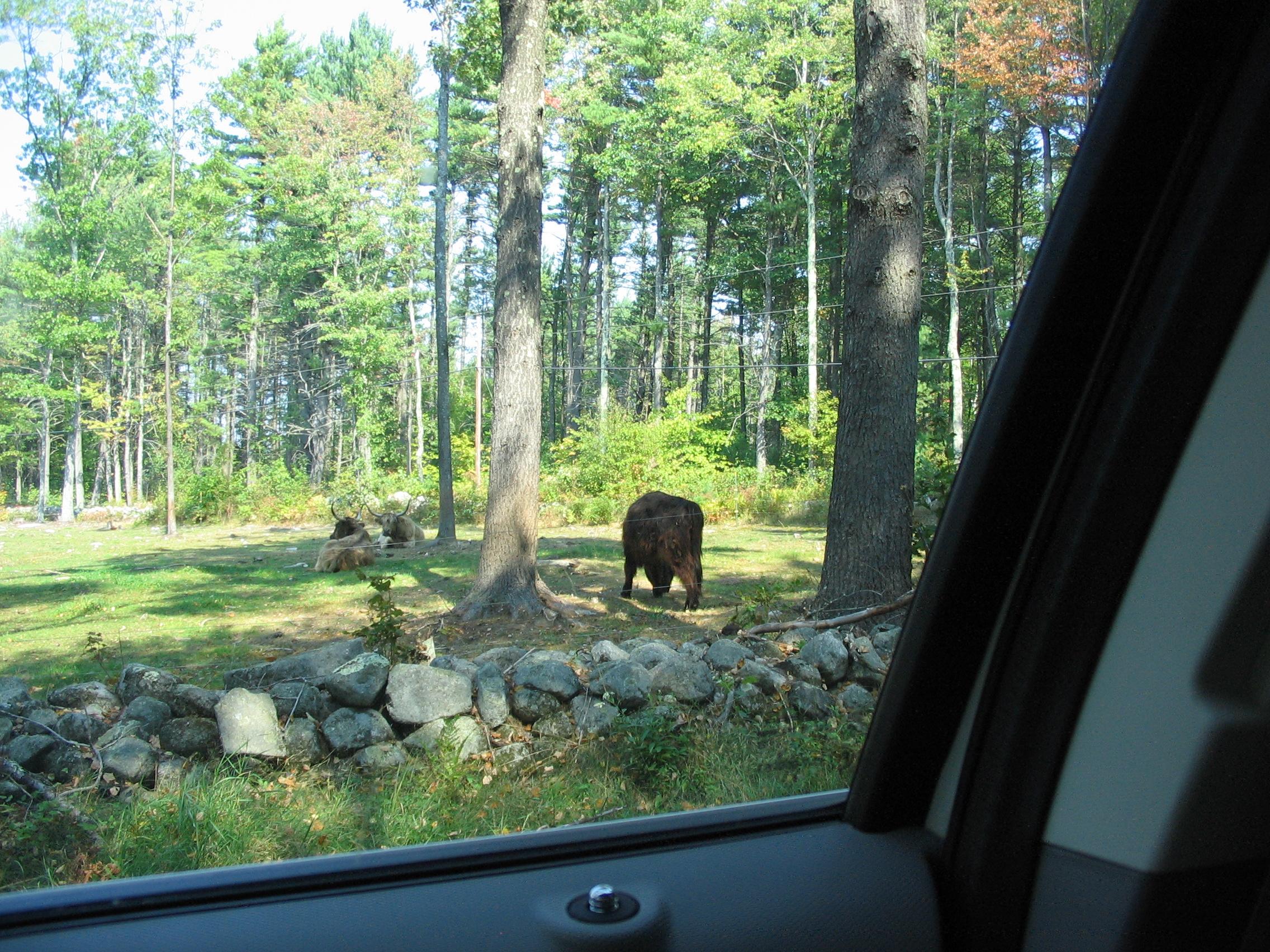 09-26-07 New Hampshire (7)
